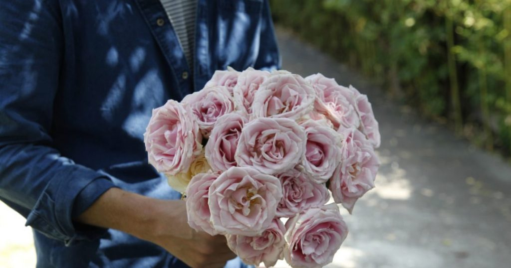 Online Stores Provide Many Options To Buy Roses Online